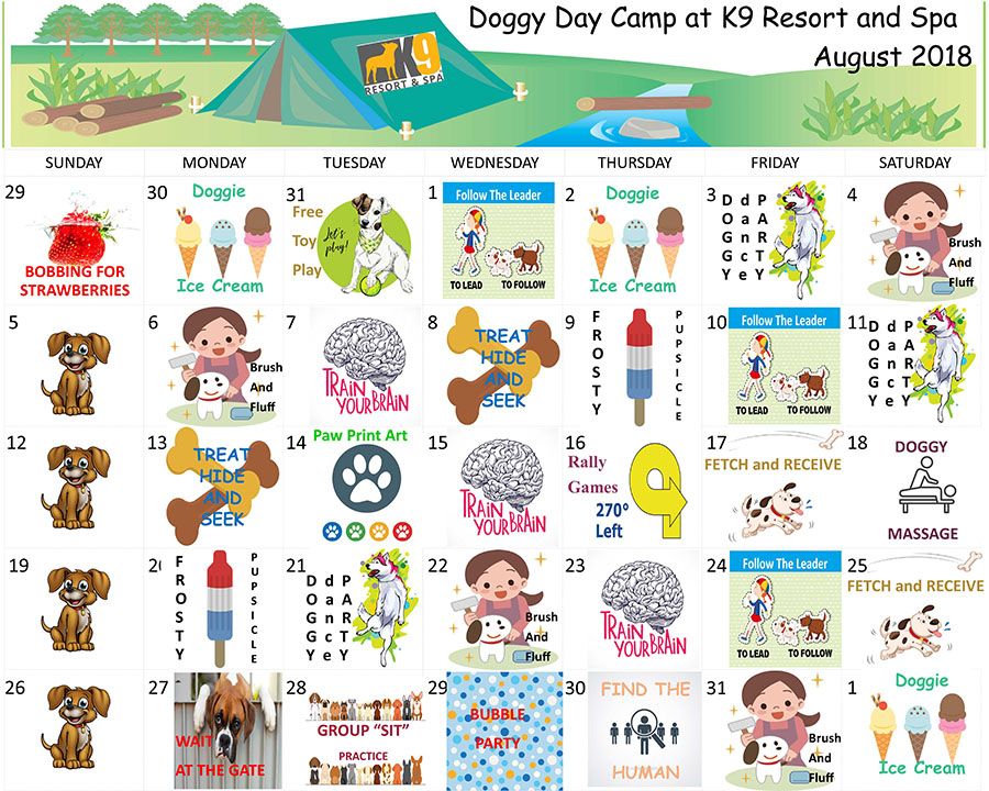 Doggy Daycare Activities For August 2018